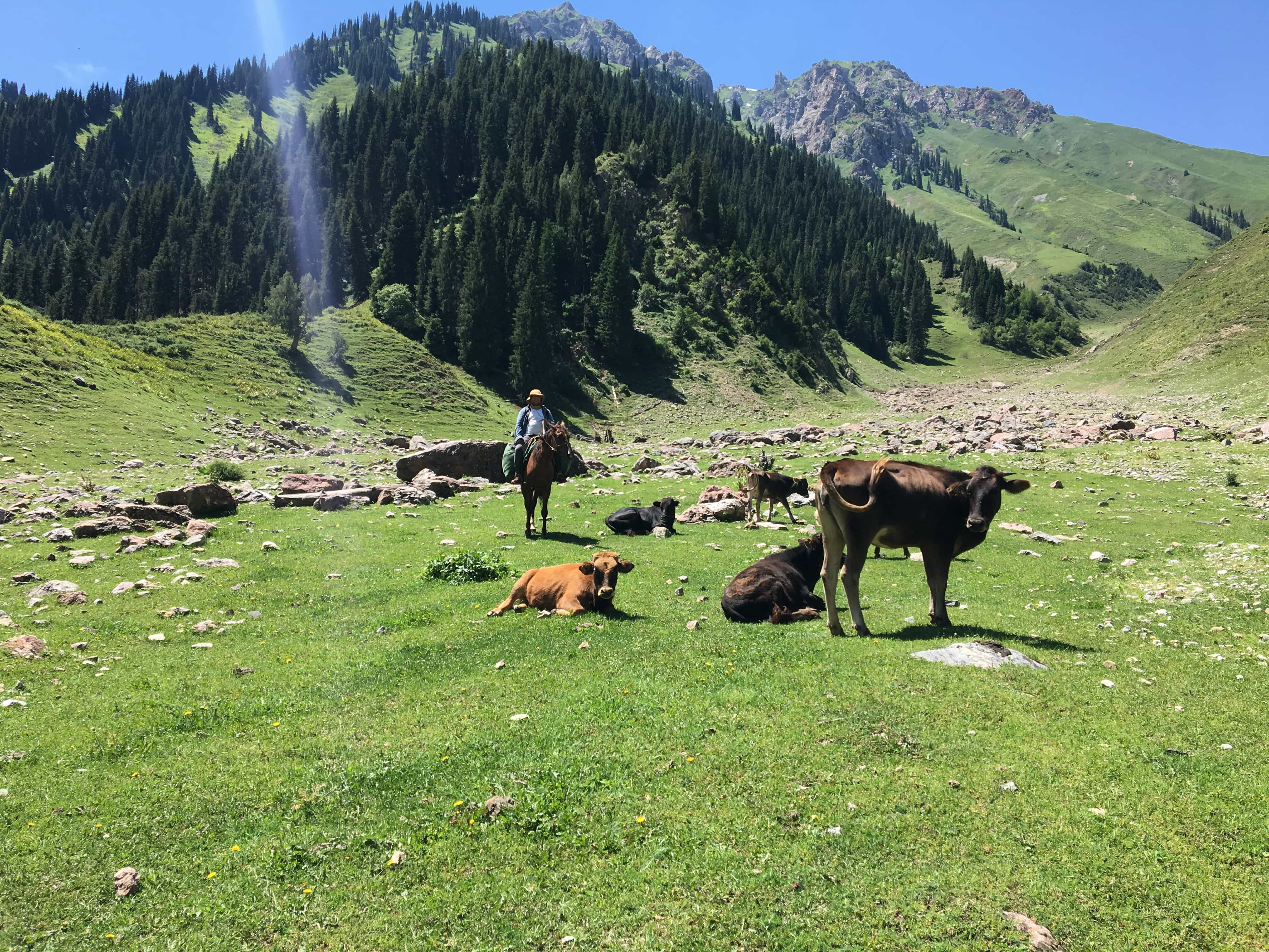 voyager-a-cheval-au-kirghizistan