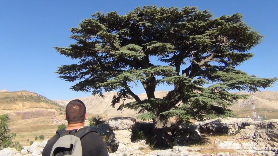 Liban: conseils pour préparer un voyage routard, mon guide complet.